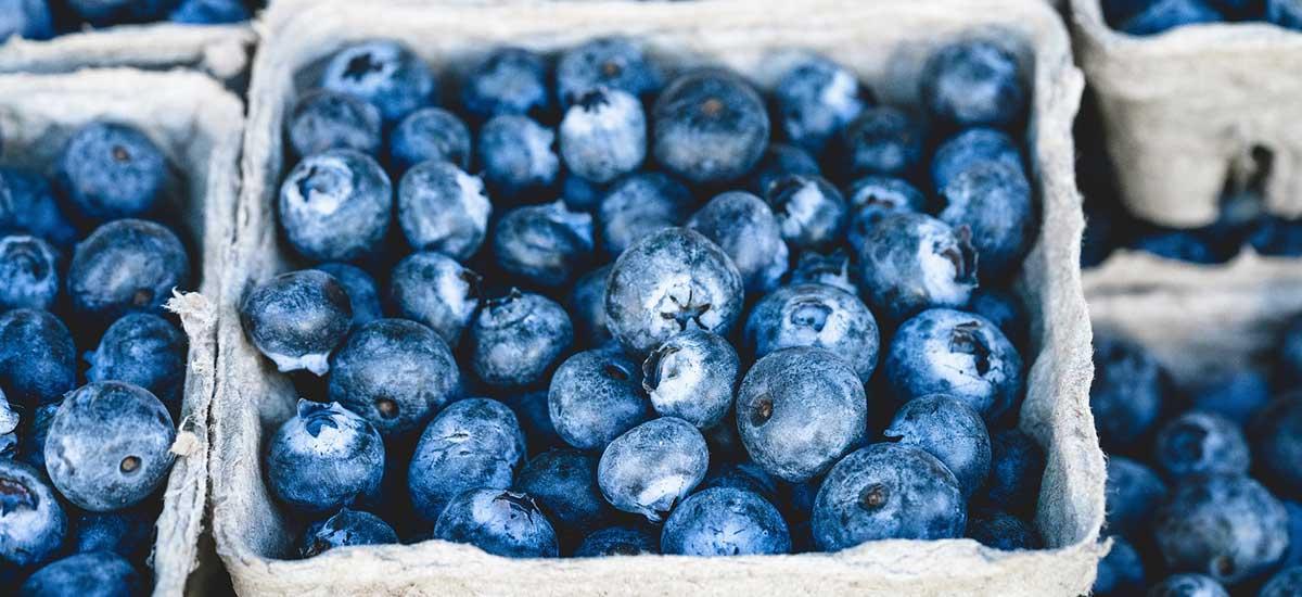 Home - Eden Farm Produce